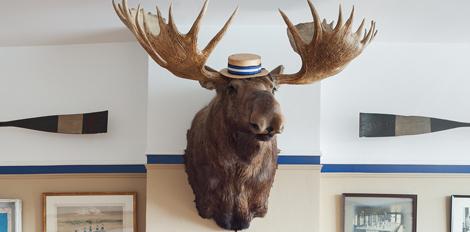 Kiss the Moose